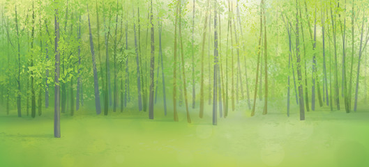 Vector green forest landscape.