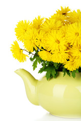 Yellow flowers in decorative teapot isolated on white