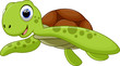 Cute turtle cartoon - 74792356