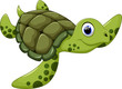 Cute turtle cartoon - 74792362