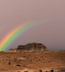 Petrified Forest Rainbow