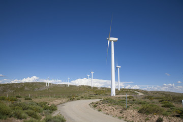 row of white wind turbines