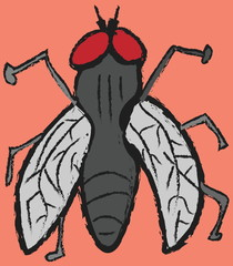 cartoon grunge fly, icon