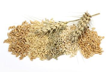 Getreide05