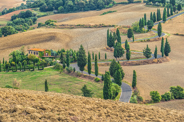 Curled road overgrown cypress trees in Tuscany, Italy
