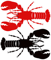 lobster red and back white background