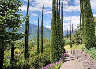 Weg im Botanischen Garten von Meran in Südtirol