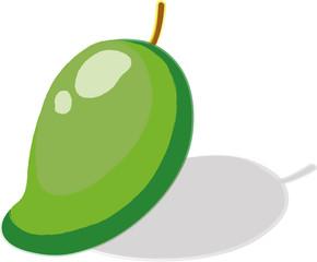 illustration sour mango fruit White background