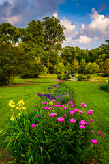 Colorful flowers in a garden at Druid Hill Park, in Baltimore, M