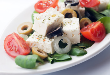 Greek cheese salad