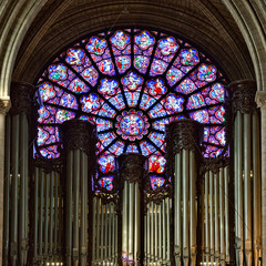 West Rose Window - Human Life