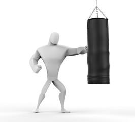 3D Boxer Training
