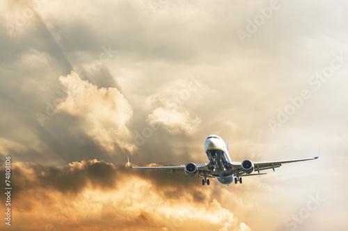 Airplane during landing - 74808106