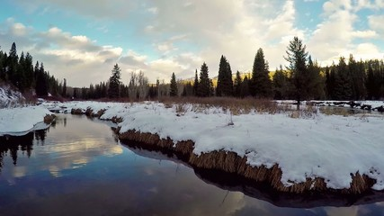 River in an Idaho forest with snow