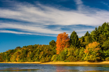 Early autumn color on the shore of Lake Marburg, in Codorus Stat