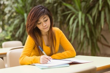 Female college student doing homework