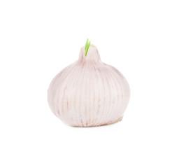 Onion close up.