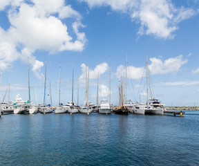 White Tall Masted Sailboats in Blue Harbor