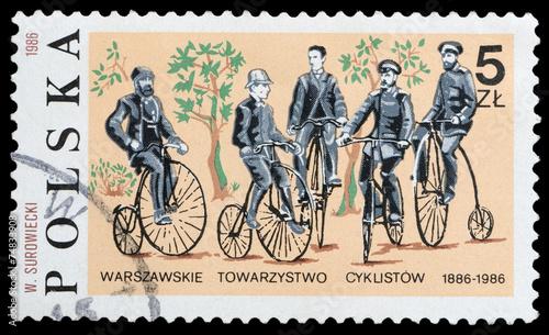 cyclist - 74833908