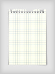 Checkered note paper sheet