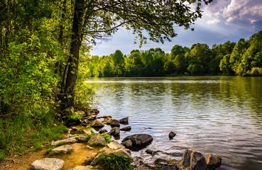 Rocks and trees along the shore of Centennial Lake in Centennial