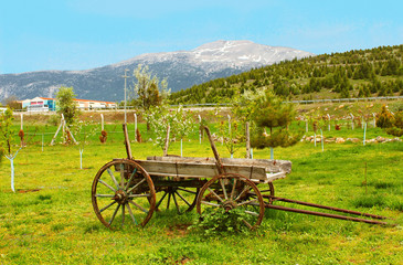 Vintage wood wagon near mountain, Turkey