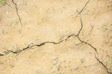 Texture of cracks in the ground