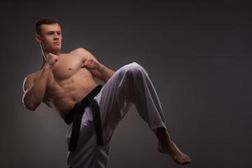 Handsome karate enthusiast