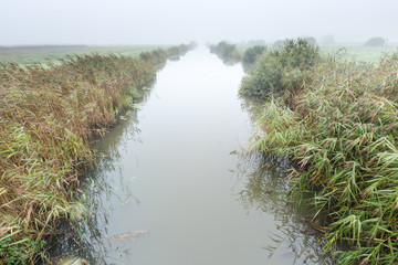 River in a misty morning rural landscape in the Netherlands