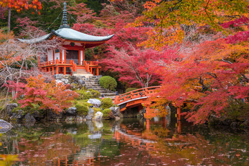 Daigoji temple in maple trees, momiji season, Kyoto, Japan © javarman