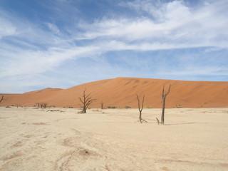 Hidden Vlei in der namib Wüste