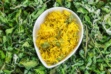 Dry calendula with green dry herbs around