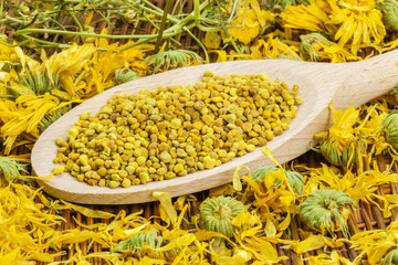 Bee pollen grains with dry calendula around