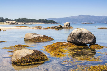 Rocks covered with algae