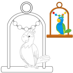 Parrot on a perch Coloring Book Page