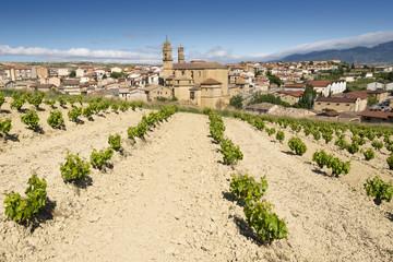 Vineyard and town of Elciego, Rioja Alavesa (Spain)
