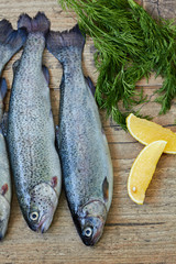 Fresh raw fish trout
