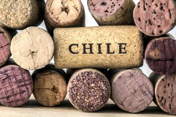 Wine bottle corks of Chile 05
