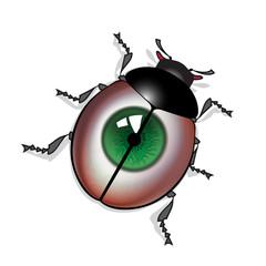 eye bug