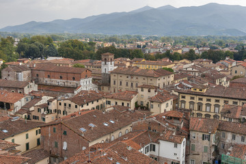 Lucca cityscape from the Guinigi tower, Italy