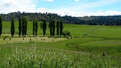 Tongariro National Park - Mount Ruapehu New Zealand