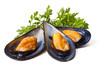 Leinwanddruck Bild - mussels isolated on white background