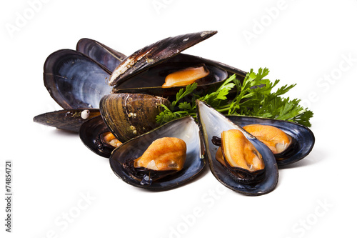 Fotobehang Schaaldieren mussels isolated on white background