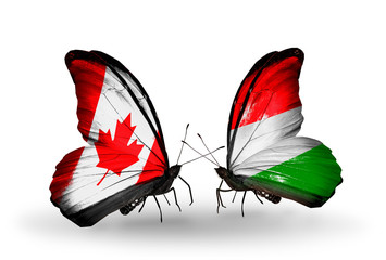 Two butterflies with flags Canada and Hungary