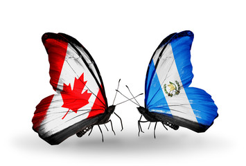 Two butterflies with flags Canada and Guatemala