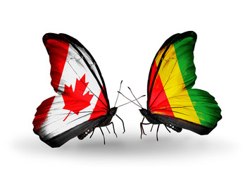 Two butterflies with flags Canada and Guinea