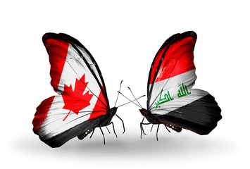 Two butterflies with flags  Canada and Iraq