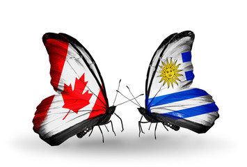 Two butterflies with flags Canada and Uruguay