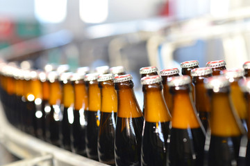Fliessband in einer Brauerei // bottles in brewery