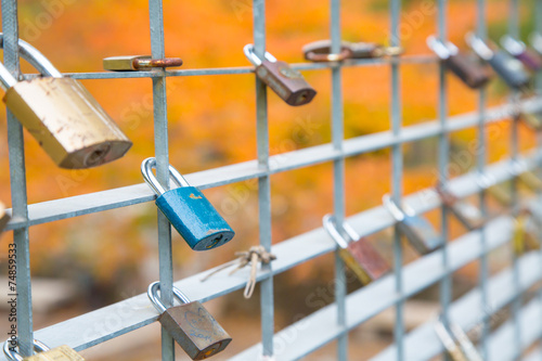 canvas print picture Love Locks